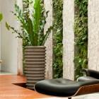 Vertical Garden on Airwell wall