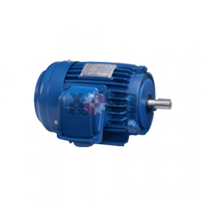 มอเตอร์ High Efficiency Motors TECO