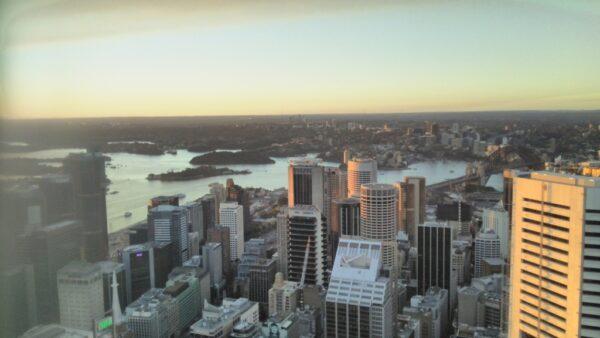 シドニータワーからの遠景