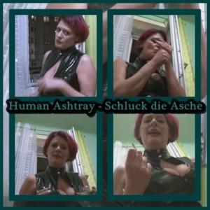 Human Asthray - Mehr kannst du nicht