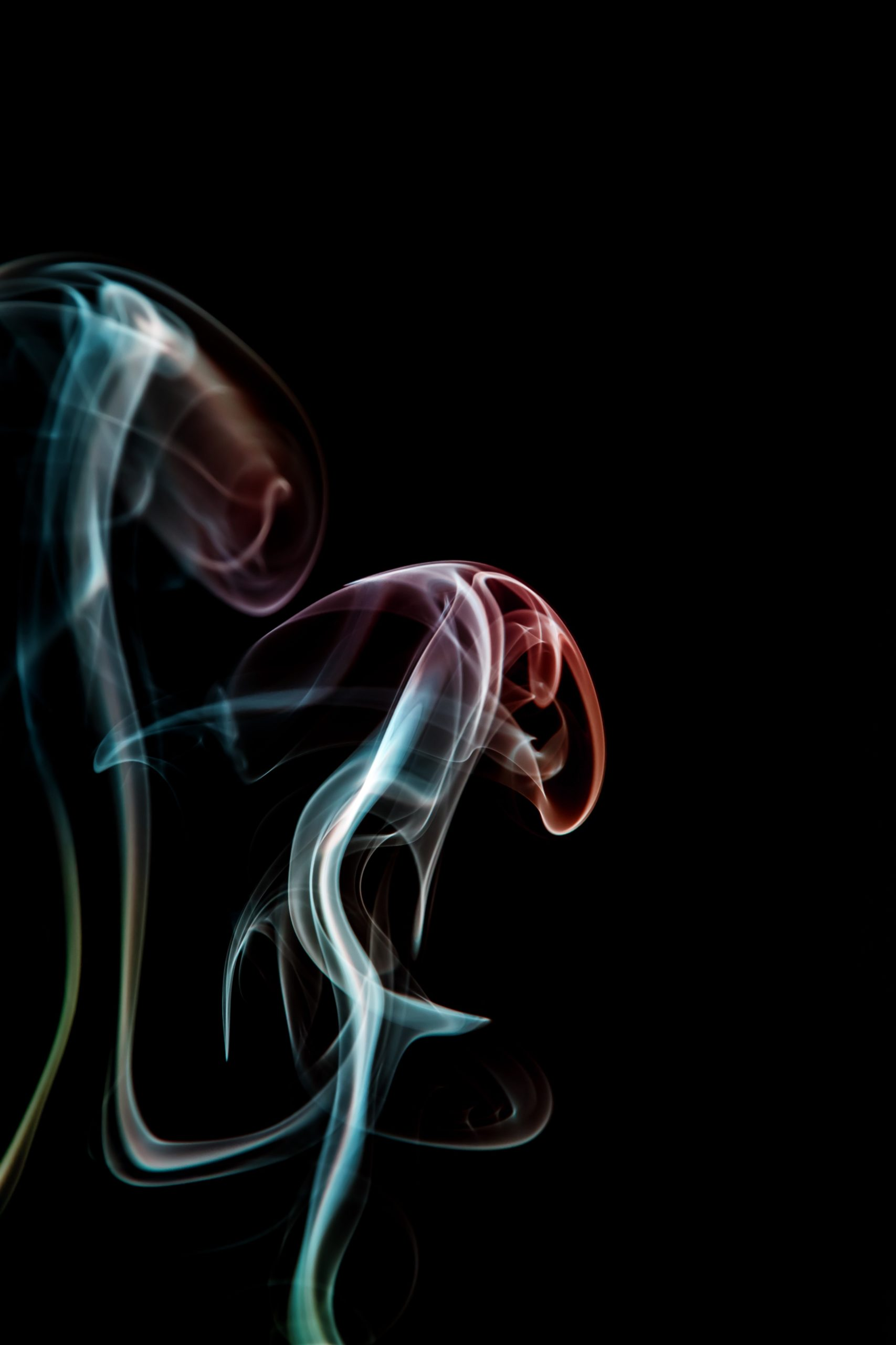 A tendril of smoke curls up on a black background. It is lit with red, blue, and green light.