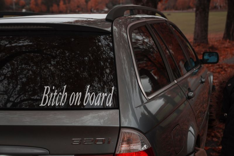 "A grey car is parked next to a row of trees with bright orange leaves. A bumpersticker of white text on a clear background says ""Bitch on board."""
