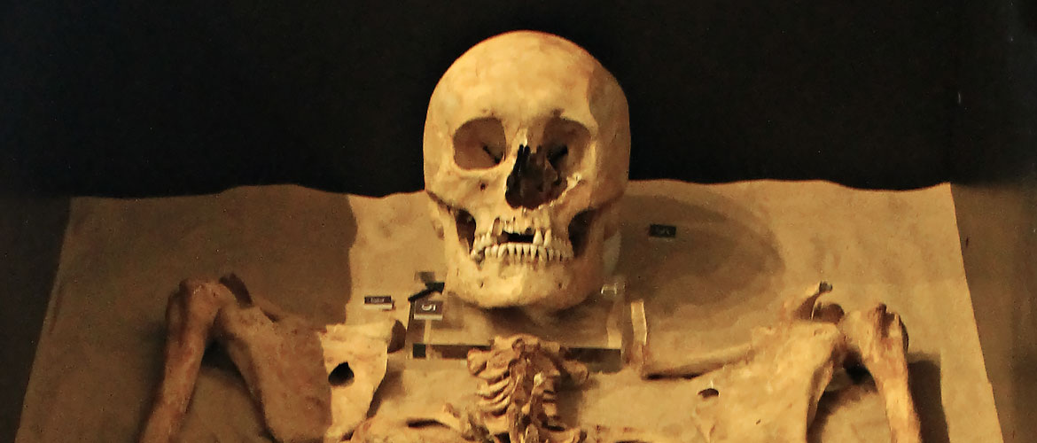 Remarkable timelapse video sees 600yearold soldier reassembled in museum  YorkMix