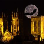 Halloween 2016 In York 20 Spookily Good Parties Gigs And Movies To Try