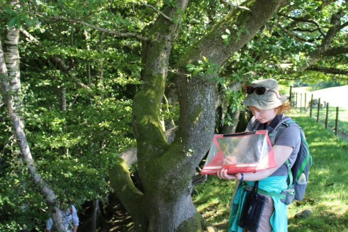 Robyn notes the presence of badgers