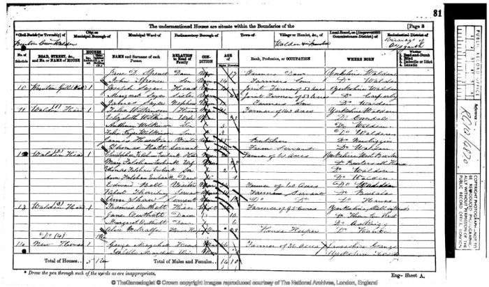 1871 census return showing Ewbank family at Walden Head. © Crown Copyright Images reproduced by courtesy of The National Archives, London, England. www.NationalArchives.gov.uk & www.TheGenealogist.co.uk