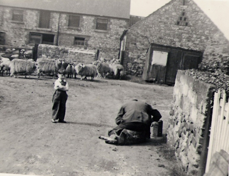 Ian Spensley 'helping' round the farm, early 1960s. Courtesy of Ian Spensley