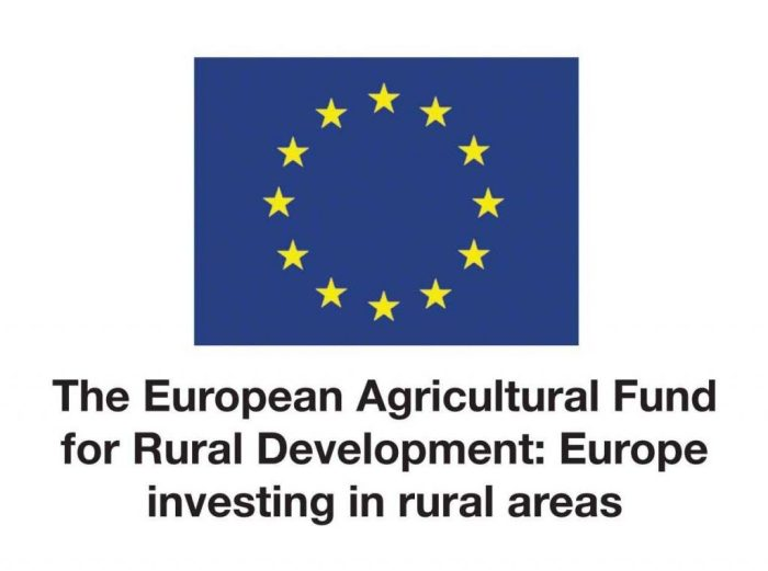 Logo of The European Agricultural Fund for Rural Development: Europe investing in rural areas