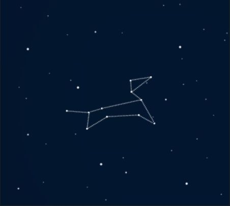 This is a graphic showing the constellation Canis Major