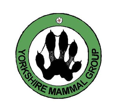 YMG logo