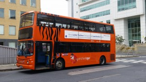 Yorkshire Tiger, one of the services not doing enough according to the Guide Dogs charity