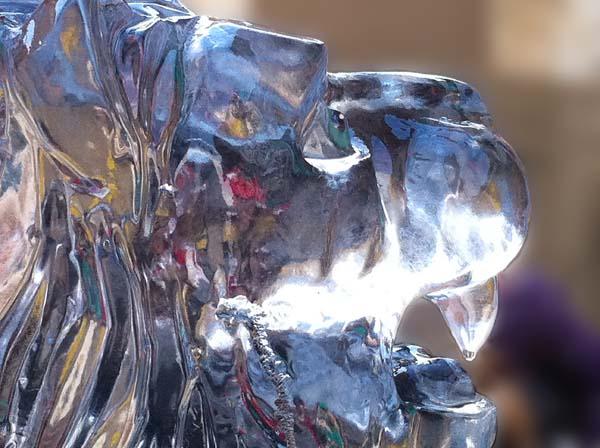 Lion ice sculpture york