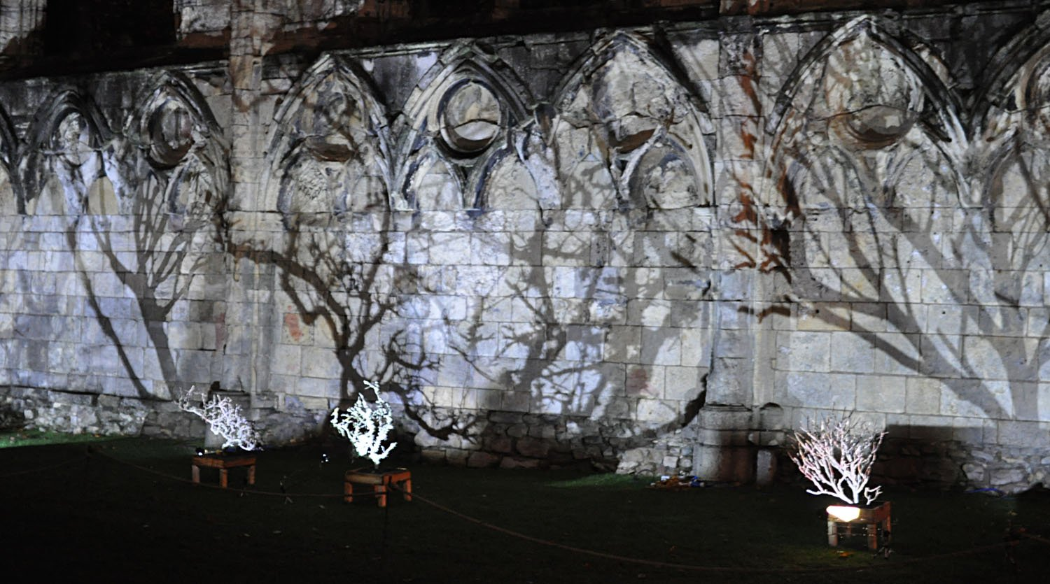 Illuminating York 2015 - The Museum Gardens