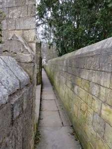 Picture from Ron and Lida - York City walls