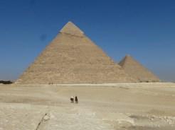 pyramids horses cairo