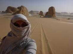 white desert picture