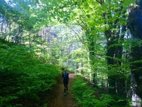 Trail Forest Running Girl