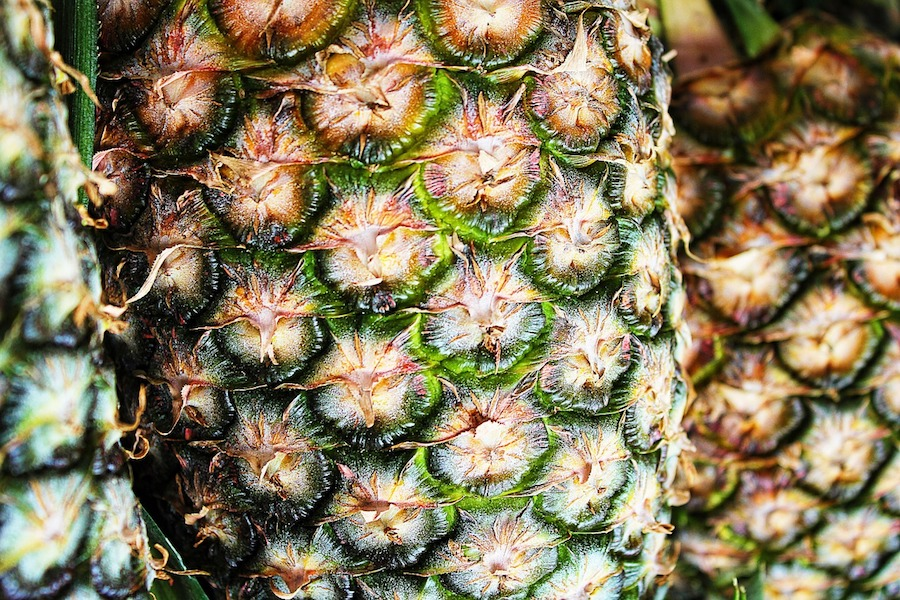 Close up of the side of a pineapple