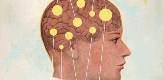 Optimal Aging Means Good Brain Health