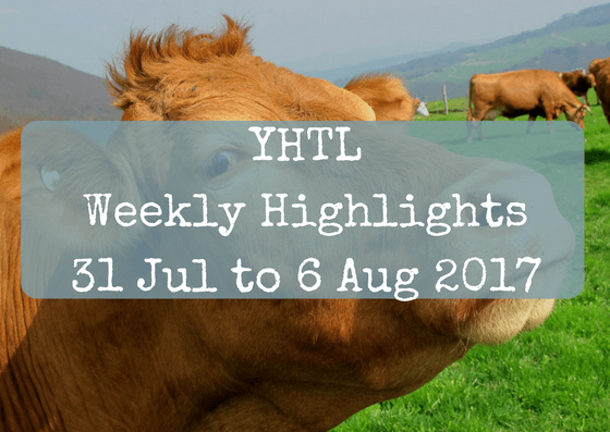 YHTL Weekly Highlights – 31 Jul to 6 Aug 2017
