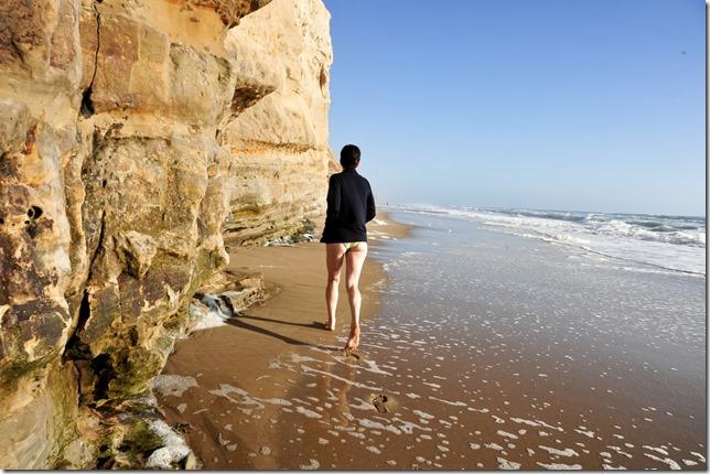 旧金山 San Gregorio Beach 裸体海滩