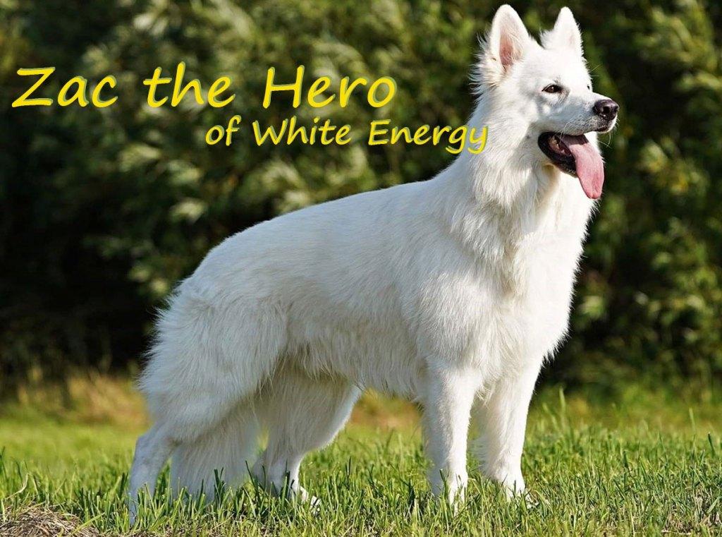 Zac The Hero of White Energy
