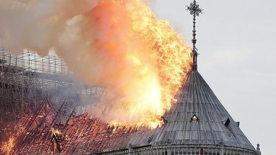Photo of Historia katedry Notre-Dame w Paryżu