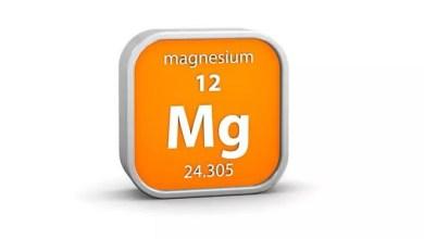 Photo of Magnez