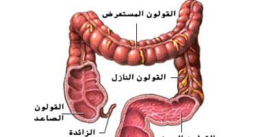القولون العصبى هو مرض شائع يأتى فى صورة إسهال أو إمساك