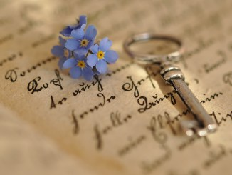 Key and Forget-Me-Not