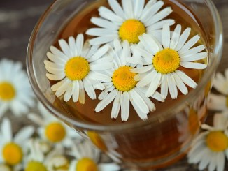 chamomile tea with flowers tea time new beginnings spring younfolded blog