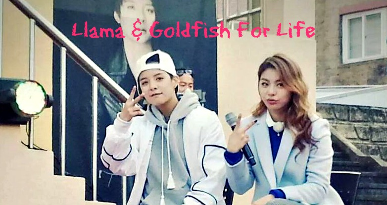 K-Variety: Ailee And Amber One Fine Day