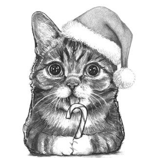 sketching of cat in Santa hat composition
