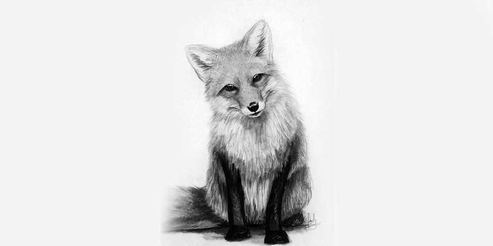 sketch of fox composition