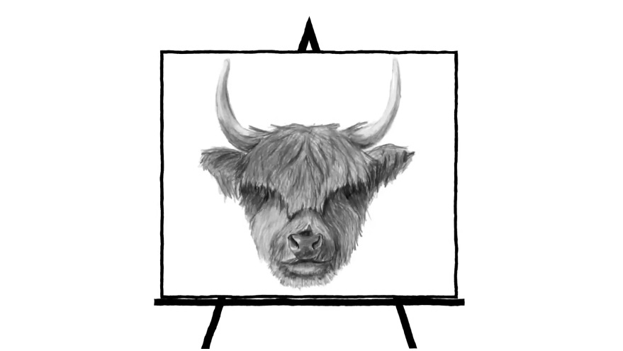 black and white pencil sketch of ox head