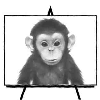 sketch of Baby Chimp