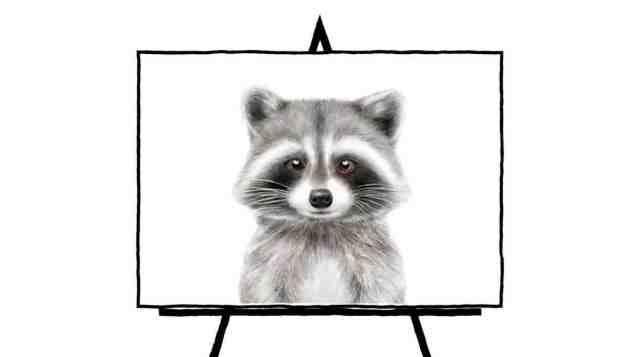 pencil sketch of raccoon