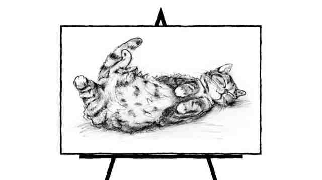 cat laying on back pencil sketch