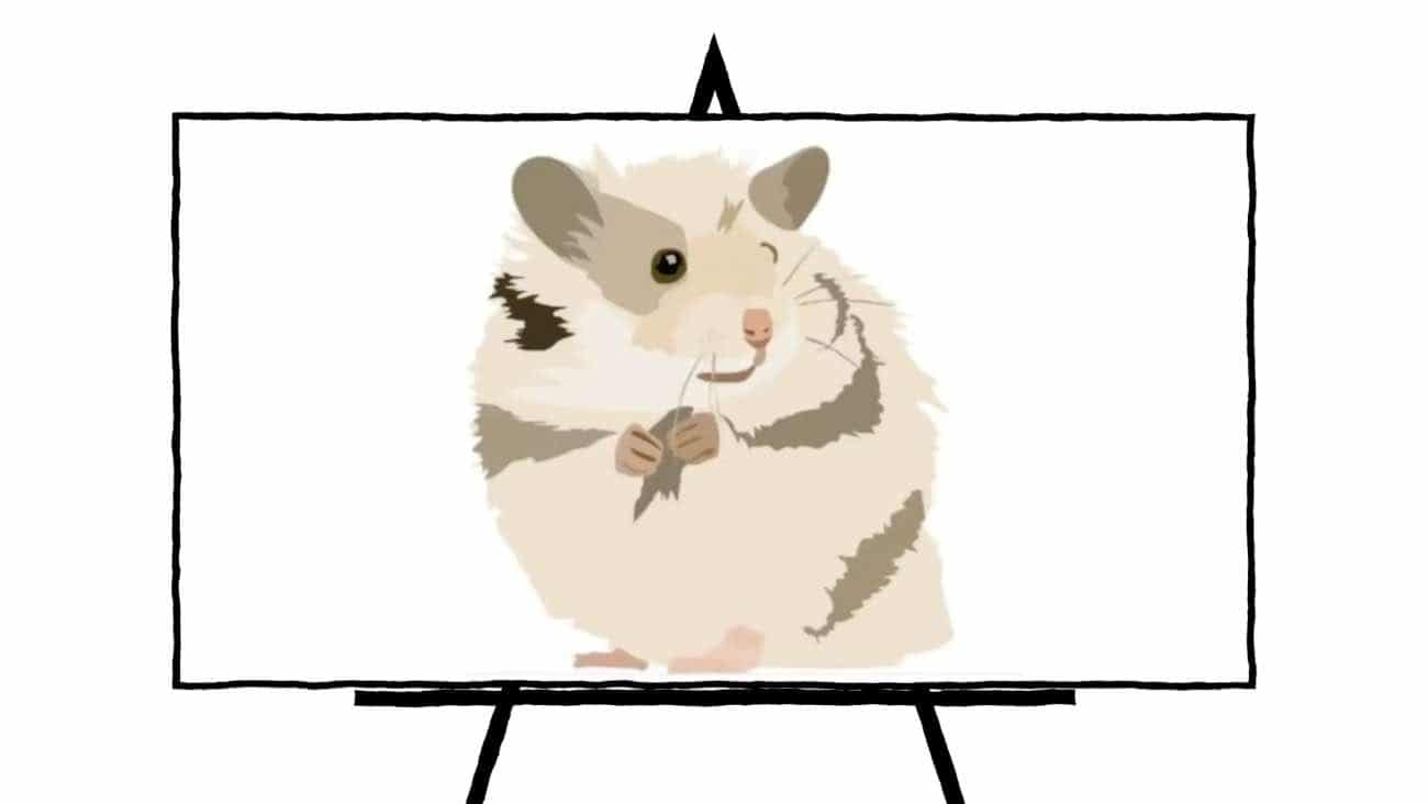 image of beige hamster with green and brown stripes