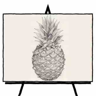 black and white pencil of pineapple