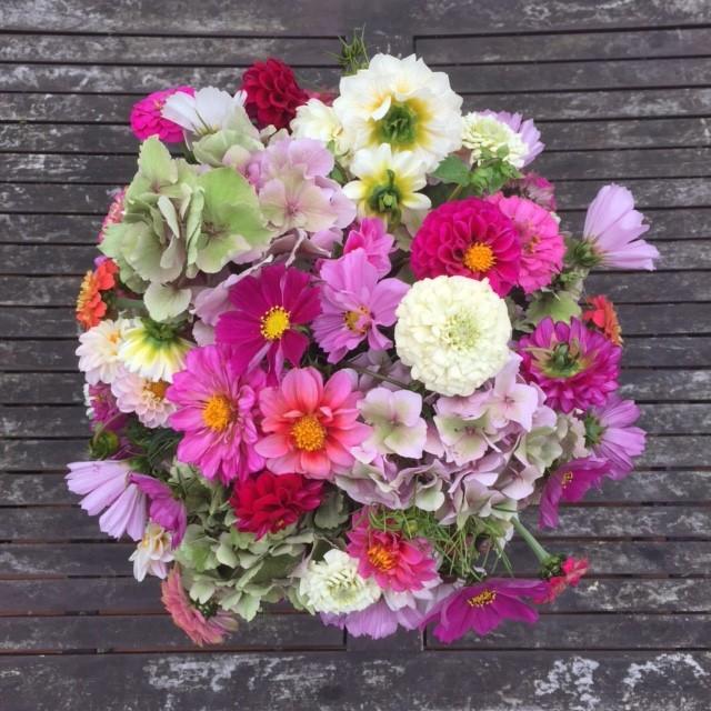 Hartley Farm-shop, British flowers