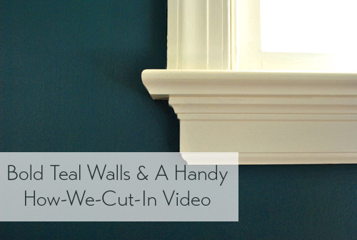 bold-teal-walls-how-we-cut-in-video