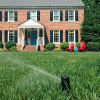 How To Install An Irrigation System (But Why You Maybe Shouldn't Do It)