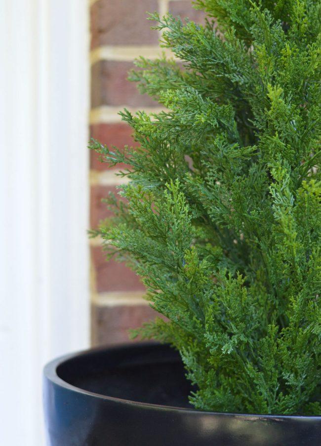 Fake Plant Evergreen Porch Planting Detail