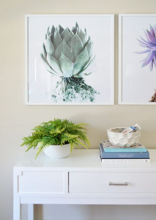 Art print on dining room wall with succulent