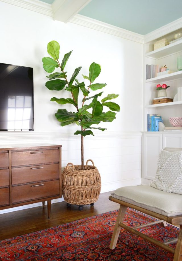 Tall faux fiddle leaf fig from Target Opalhouse against white walls