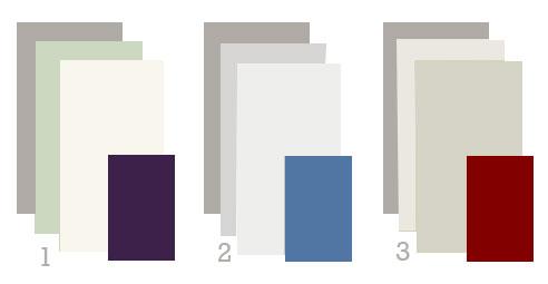 Robin\'s Color Conundrum