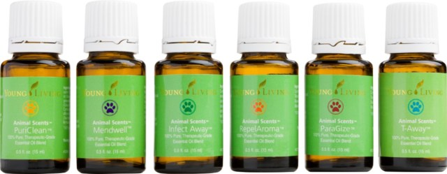essential-oils-and-pets-a-quick-howto-pets