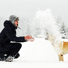 Help Your Dog Weather Winter