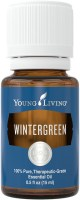 Wintergreen Essential oil uses and benefits